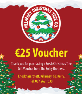 EUR25 Christmas Tree Voucher