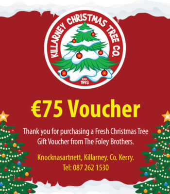 EUR75 Christmas Tree Voucher